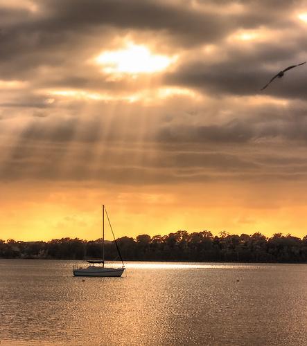 sun-rays-aussiegall