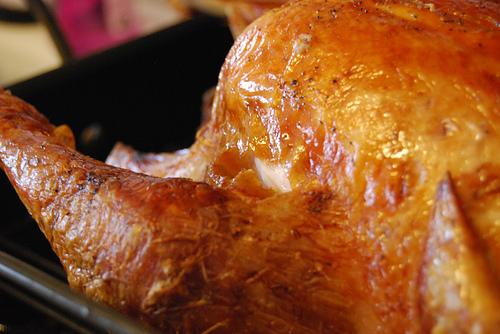 turkey-jslander