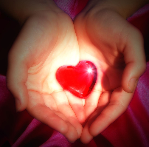 heart-in-hands-aussiegall