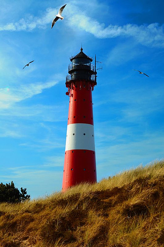 lighthouse-birds-priotography1