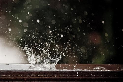 rain-plop-juliannehide