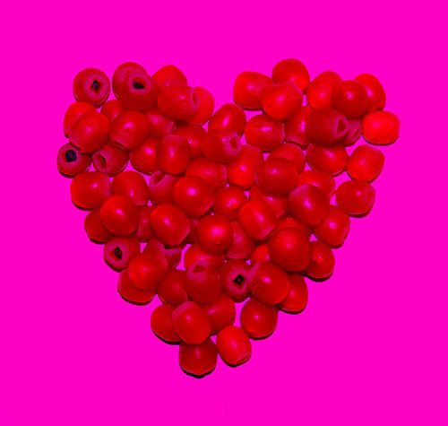 berry-heart-pink-sherbet-photography