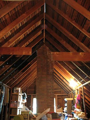 attic-squirrel-cottage