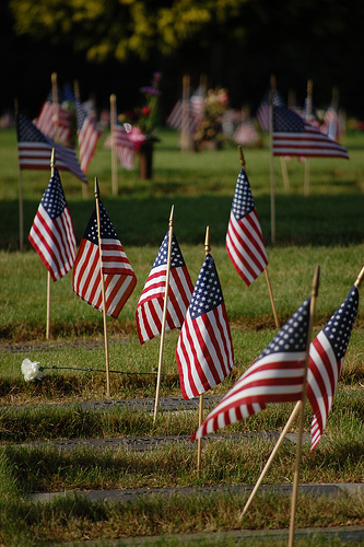 Memorial Day Flags - Evan S. Photography