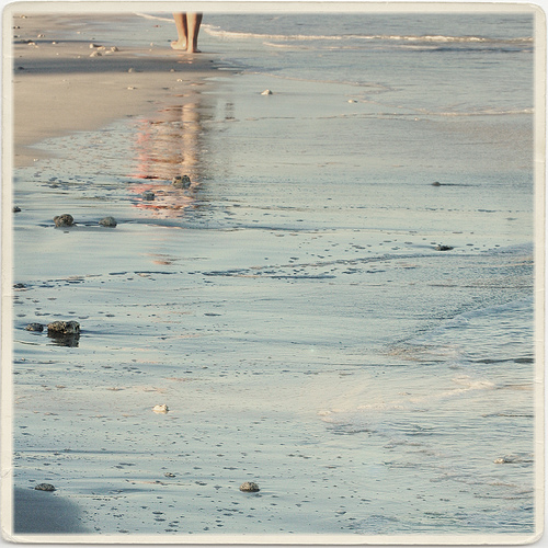 A Walk on th Beach - lepiaf.geo