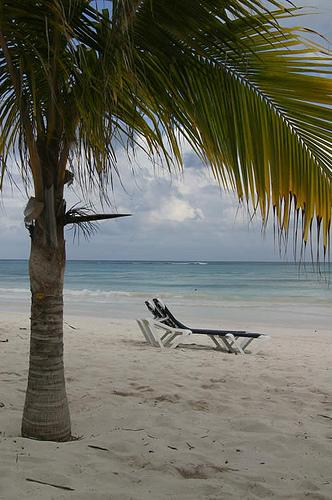 Beach - virtualphotographystudio