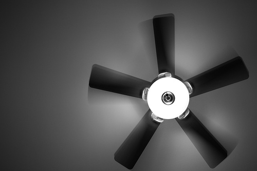 Ceiling Fan - !!!! scogle
