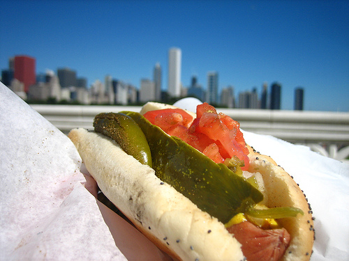 Chicago Hot Dog - adactio