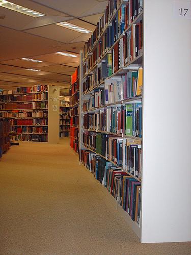 Library - cybrgrl