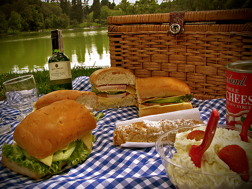 Picnic in the Park - Nanda