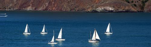 Sail Boats - tinou bao