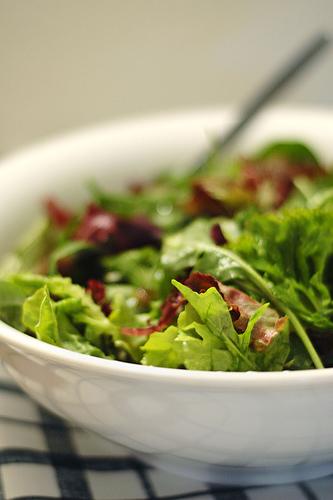 Salad - catsper
