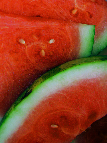 Watermelon - moreno0101