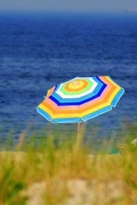 Beach Umbrella - mysza831