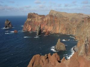 Madeira - vigour