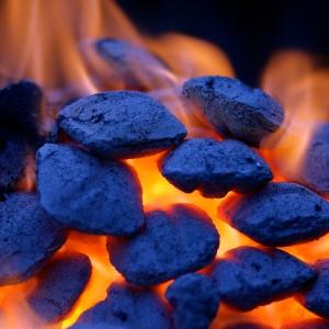 Grilling Coals - Robert S. Donovan (booleansplit)