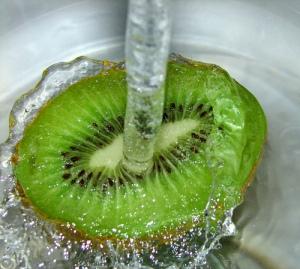Kiwi - aussiegall