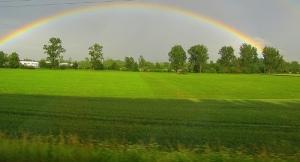 Rainbow - bbjee